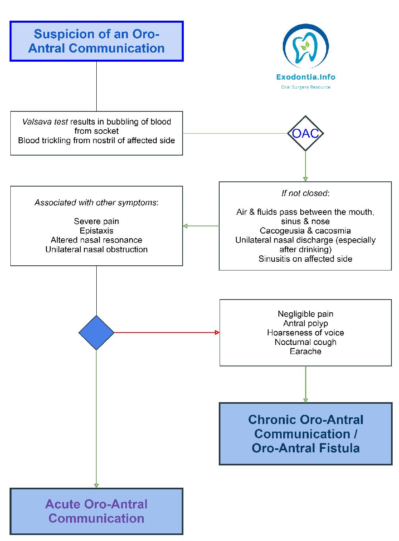 oac_oaf_decision_tree_horizontal__1_-1003x1360