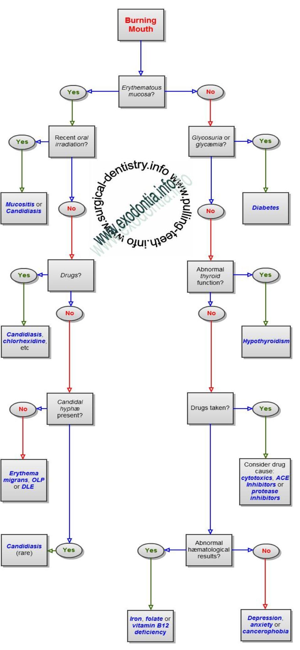 Burning Mouth Syndrome - Diagnosis Algorithm